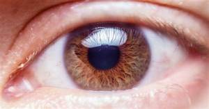 Human Eye Anatomy Quiz