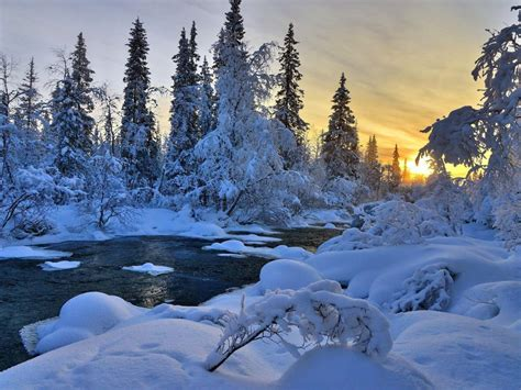 winter river nature trees landscape hd wallpaper