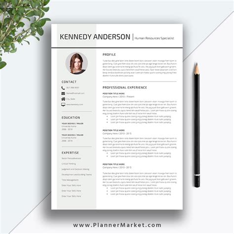 Creative Resume Format by Professional Resume Template Cv Template Creative Simple