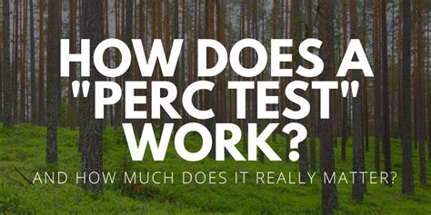 "How Does A ""perc Test"" Work? (and How Much Does It Really"