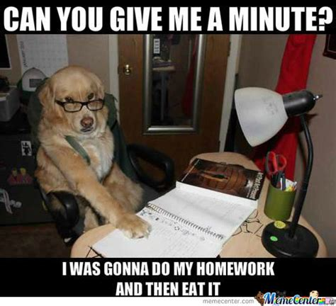 Accountant Dog Meme - accountant memes best collection of funny accountant pictures
