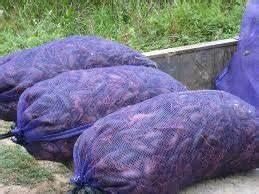 "Amazon.com: Mesh Crawfish Bag 18"" x 30"" (PURPLE) - 100 per ..."