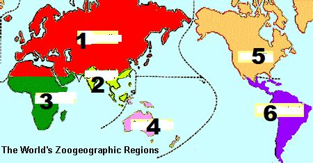 Soal dan kunci jawaban dar bab 2 langkah penelitian geografi • langkah kerja laporan geografi tanah. Soal dan Kunci Jawaban UNBK Geografi 2019 No 31-35 ...