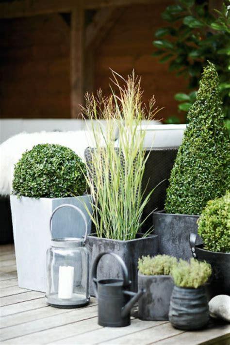 Garten Modern Bepflanzen by Balkon Bepflanzen 60 Originelle Ideen