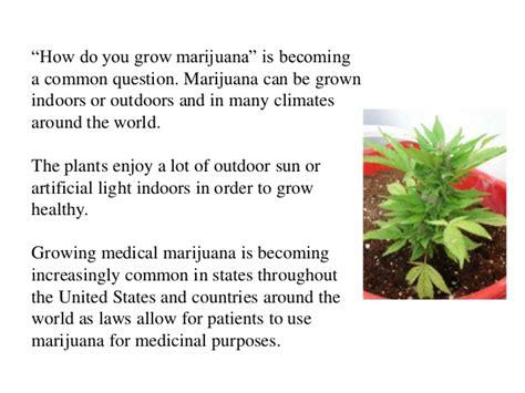 can you use a flood light to grow plants marijuana how to grow medical cannabis