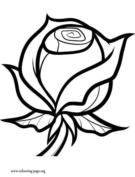 Valentine's Day - A Valentine Rose coloring page