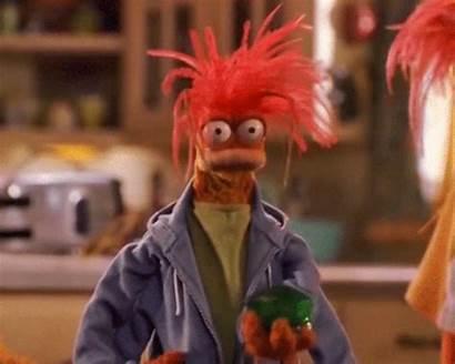 Muppet Pepe Wiki Wikia Jello