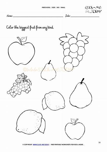 Worksheet Pages Colouring Coloring Worksheets Preschool Basics