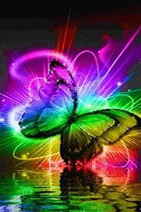 neon butterfly Cool Things Pinterest