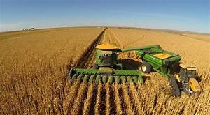 Harvest Corn Related Keywords - Harvest Corn Long Tail ...