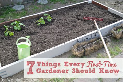 need a gardener 7 gardening tips you need to know free articles directory free seo articles hot articles