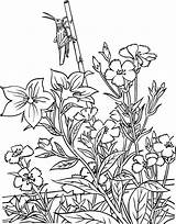 Coloring Gardening Pages Print sketch template