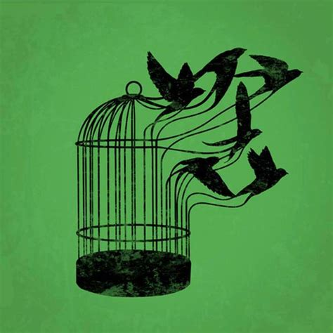 i know why the caged bird sings poem tiempo de palabra la libertad como destino por carlos