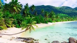 Beach Palm Trees Resort Island Full HD Desktop Wallpapers ...