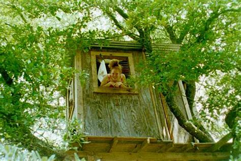 tree house designs  kids backyard ideas
