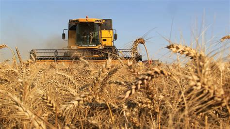 Monsanto Supreme Court by Us Farmers Challenging Monsanto Patent Claims Appeal To
