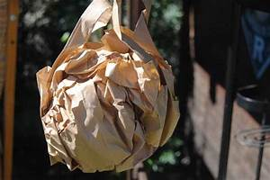 Wespenfalle Selber Bauen : wie wespen vertreiben so einfach geht 39 s ~ Markanthonyermac.com Haus und Dekorationen