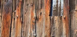 Free, Images, Tree, Branch, Board, Texture, Plank, Floor, Trunk, Wall, Soil, Lumber, Hardwood