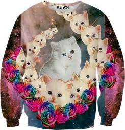 cat sweater cats wearing sweaters memes