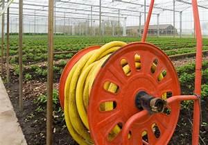 Gewächshaus Bewässerung Mit Regenwasser : wisy ag regenwasser zur bew sserung im erwerbsgartenbau ~ Watch28wear.com Haus und Dekorationen