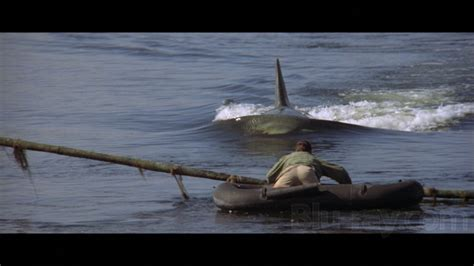 Jaws 2 Boat Attack by Jaws 2