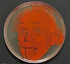 Portraits of famous faces created in petri dishes by ...