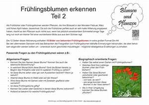 Was Sind Frühlingsblumen : bildkarten mit fotos von fr hlingsblumen zur seniorenbesch ftigung ~ Whattoseeinmadrid.com Haus und Dekorationen