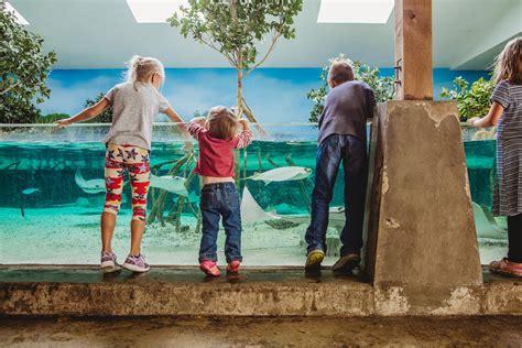 zoo wayne fort children childrens child indiana miss crowd brooke walls