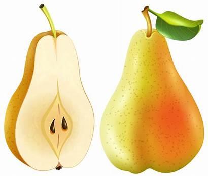 Pear Transparent Clip Clipart Fruit Pera Frutas