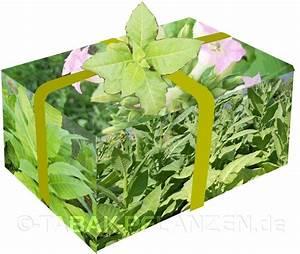Pflanzen Für Raucher : tabak raucher und garten geschenk geschenkidee dauerhaft freude schenken mit dem tabakset ~ Markanthonyermac.com Haus und Dekorationen