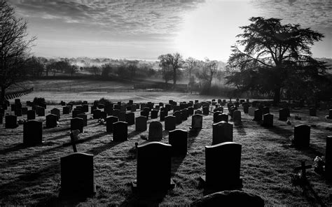 Wallpaper Graveyard by Cemetery Bw Tombstones Graveyard Trees Hd Wallpaper