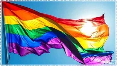 Lgbt Bandeira Elo7