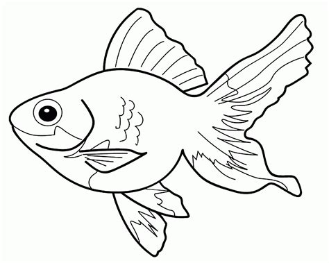 Coloring Hewan by Coloring Fish