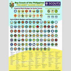 """The Place I Call """"my Brown Sea Island"""" Bsp Progresive Scheme & The Badge System"""