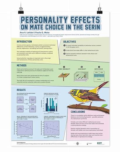 Poster Scientific Posters Research Academic Presentation Behance