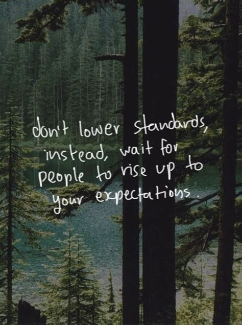 forest woods  quotes quotesgram