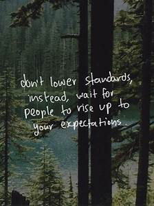 Forest Woods An... Forest Floor Quotes