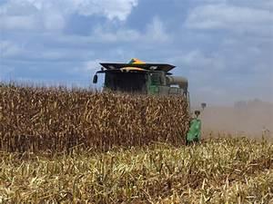 Corn Harvest Underway in Jackson County » Newsletters