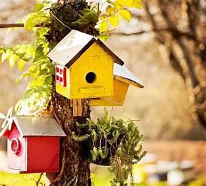 Vogelhäuschen Bauen Anleitung : die besten 25 nistkasten bauen ideen auf pinterest vogelh uschen bauen vogelnester und ~ Markanthonyermac.com Haus und Dekorationen