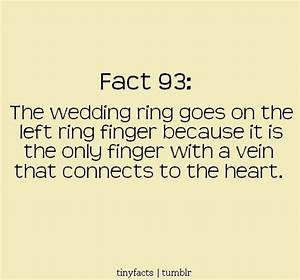 quotes about wedding rings quotesgram With wedding ring quotes