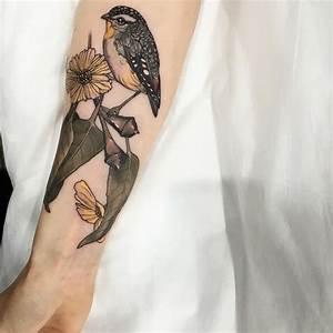 Tatouage Avant Bras Femme Fleur : tatouage oiseau passion pour la libert et d sir de changement ~ Farleysfitness.com Idées de Décoration