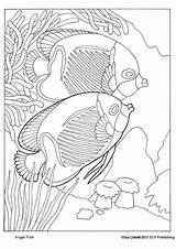 Coloring Pages Angelfish Fish Angel Adult Animal Colouring Ocean Mosaic Printable Drawings Educationalcoloringpages Drawing Getcoloringpages sketch template