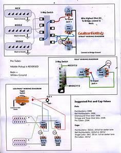 2 Hum  1 Vol  2 Tone  Strat Style 3 Way Switch