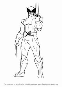 Learn How To Draw Wolverine Wolverine Step By Step