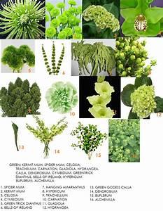 GREEN FLOWERS - Dahlia Floral Design