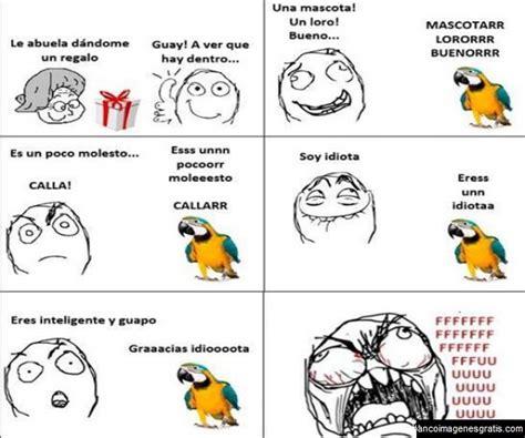 Memes Para El Facebook - el loro memes para facebook banco de imagenes y portadas para facebook