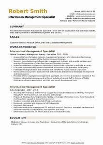 Information Management Specialist Resume Samples