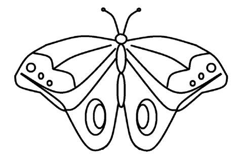 Mewarnai Gambar Sketsa Hewan Kupu-kupu 5