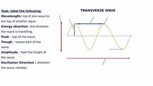 Transverse  U0026 Longitudinal Wave Diagram Label Worksheets