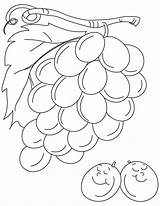 Grapes Coloring Pages Sour Grape Printable Fruits Sheets Always Colouring Bestcoloringpages Print Popular Para Vegetables Recommended sketch template